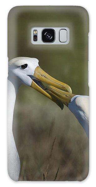 Albatross Courtship Galaxy Case
