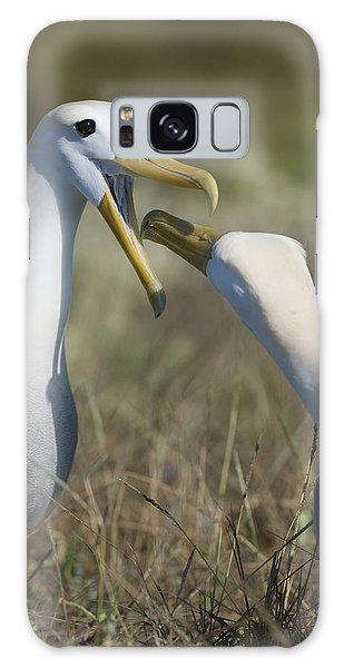 Albatross Perform Mating Ritual Galaxy Case