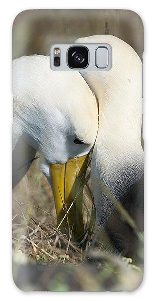 Albatrosses Snuggle Galaxy Case