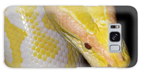 Albino Burmese Python Galaxy Case by Nigel Downer