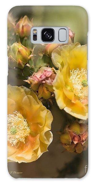 'albispina' Cactus Blooms Galaxy Case