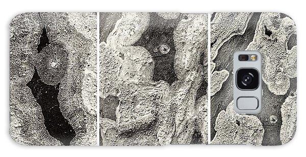 Alien Triptych Landscape Bw Galaxy Case