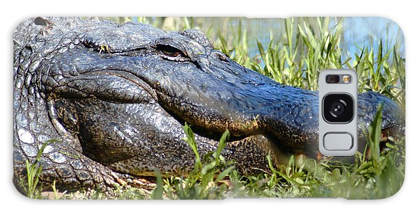 Alligator Smiling Galaxy Case