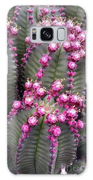 All The Cactus Are Happy Galaxy Case