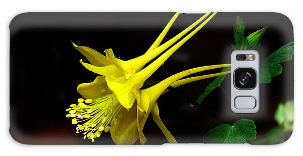 All Yellow Columbine Galaxy Case