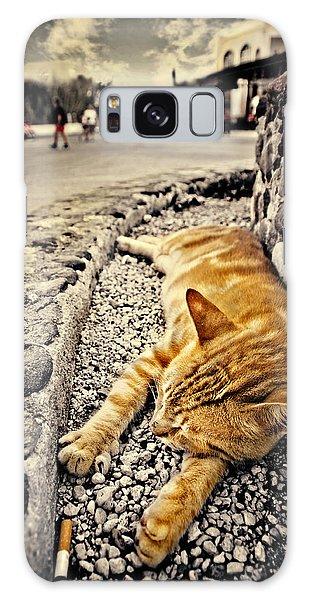 Alley Cat Siesta In Grunge Galaxy Case by Meirion Matthias