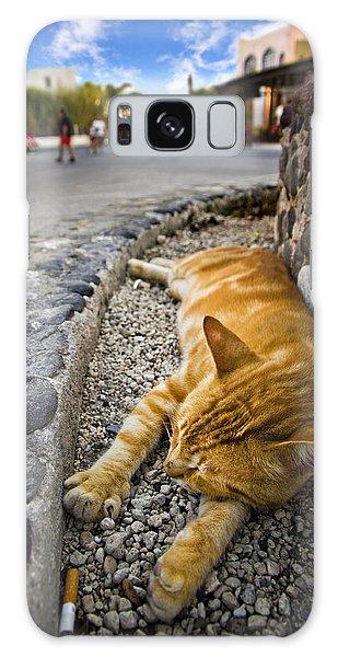 Alley Cat Siesta Galaxy Case by Meirion Matthias