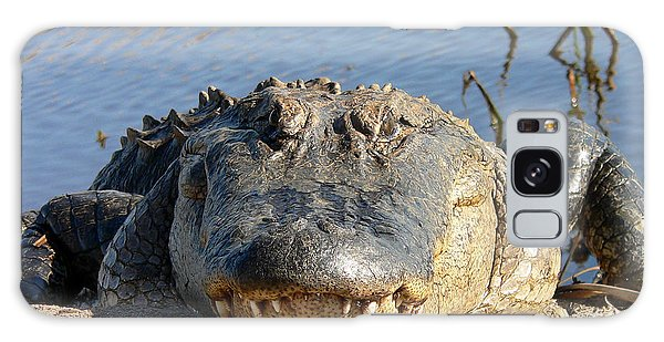 Alligator Approach Galaxy Case by Al Powell Photography USA