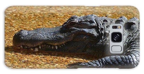 Alligator Galaxy Case by DejaVu Designs