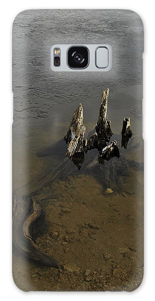 Alligator Stump Galaxy Case