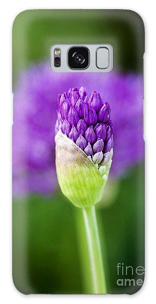 Allium Hollandicum Purple Sensation Galaxy Case
