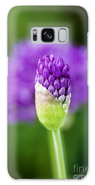 Allium Hollandicum Purple Sensation Galaxy Case
