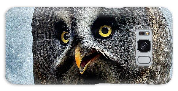 Allocco Della Lapponia - Tawny Owl Of Lapland Galaxy Case