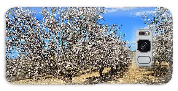Almond Trees Galaxy Case
