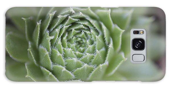 Aloe Galaxy Case