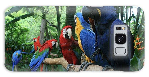 Macaw Galaxy Case - Aloha Kaua Aloha Mai No Aloha Aku Beautiful Macaw by Sharon Mau
