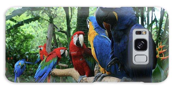 Aloha Kaua Aloha Mai No Aloha Aku Beautiful Macaw Galaxy Case