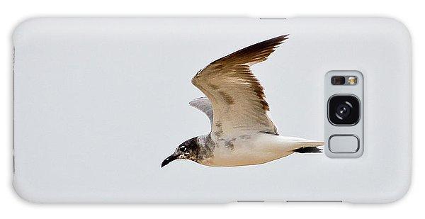 Alongside - Seagull Galaxy Case