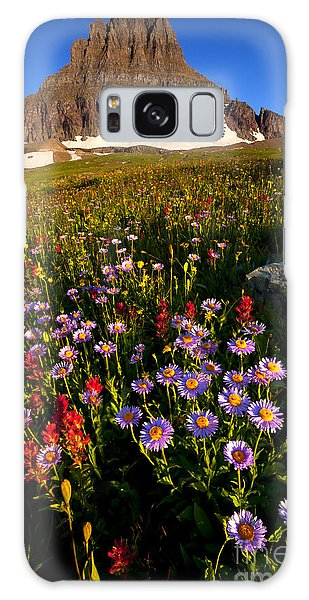Alpine Meadow Galaxy Case