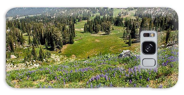 Haybale Galaxy Case - Alpine Meadow by Robert Bales