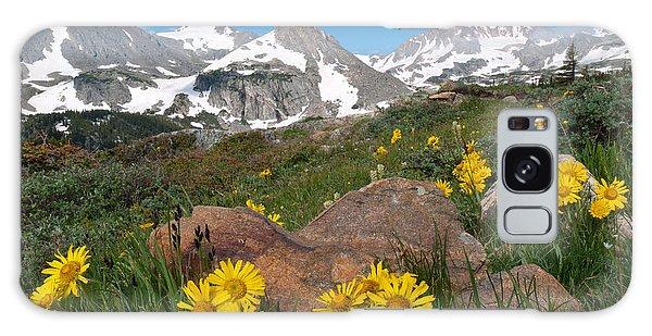 Alpine Sunflower Mountain Landscape Galaxy Case