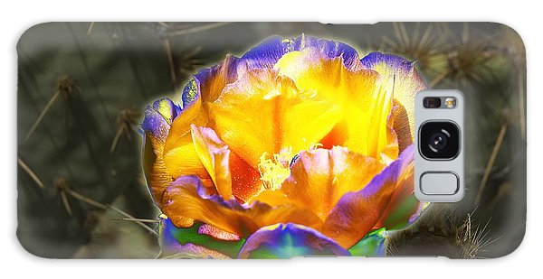 Altered Yellow Prickly Pear Flower Galaxy Case