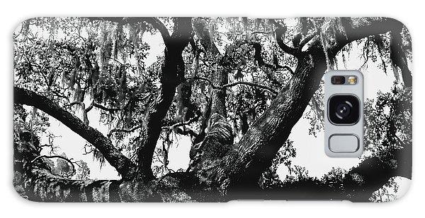 Amazing Oak Tree Galaxy Case by Debra Forand