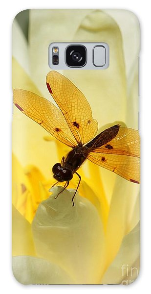 Amber Dragonfly Dancer Galaxy Case