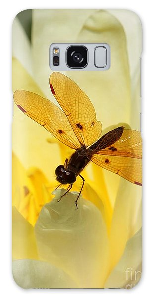 Amber Dragonfly Dancer Galaxy Case