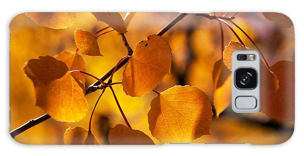 Amber Leaves Galaxy Case by The Forests Edge Photography - Diane Sandoval