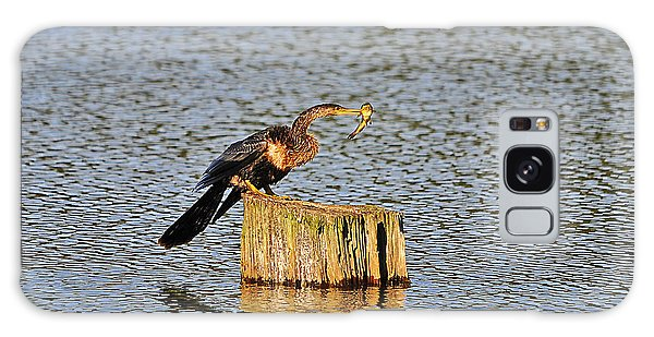 American Anhinga Angler Galaxy Case by Al Powell Photography USA