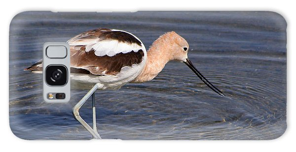 American Avocet Galaxy Case by Bob and Jan Shriner