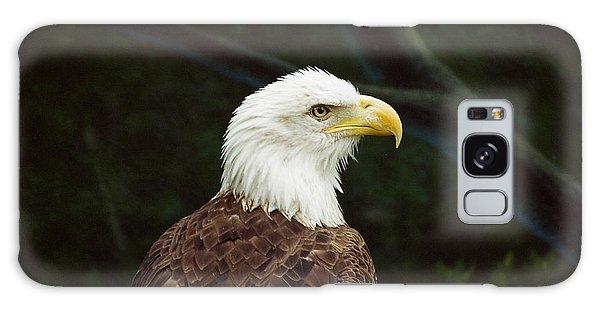 American Bald Eagle Galaxy Case by Vinnie Oakes