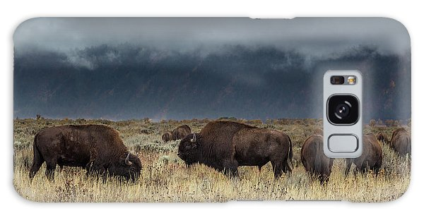 American Bison On The Prairie Galaxy Case