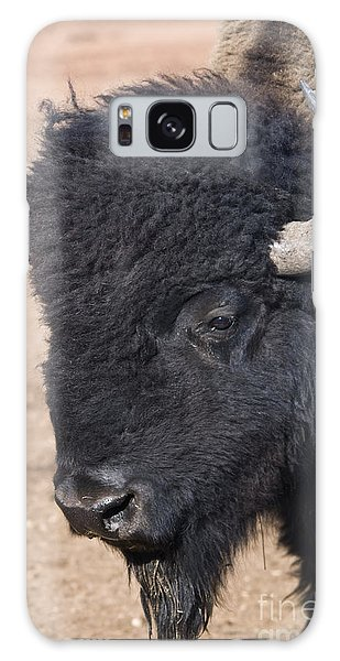 American Buffalo Galaxy Case