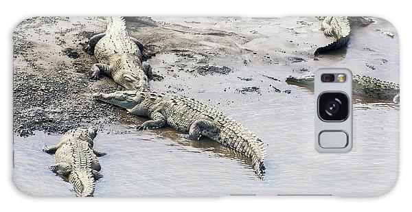American Crocodiles (crocodylus Acutus) Galaxy Case by Photostock-israel