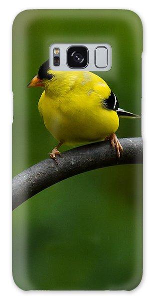 American Goldfinch Galaxy Case