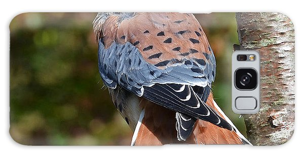 American Kestral Portrait Galaxy Case by Rodney Campbell