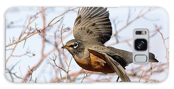 American Robin In Flight Galaxy Case by Stephen  Johnson