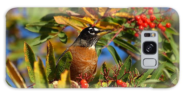 American Robin Galaxy Case by James Peterson