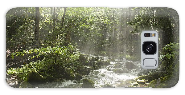 Ammonoosuc Ravine Trail - White Mountains Nh Usa Galaxy Case