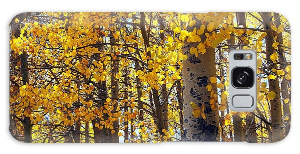 Among The Aspen Trees In Fall Galaxy Case by Amy McDaniel