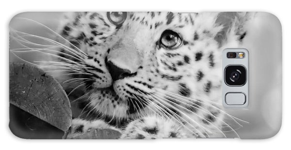 Amur Leopard Cub Portrait Galaxy Case by Chris Boulton