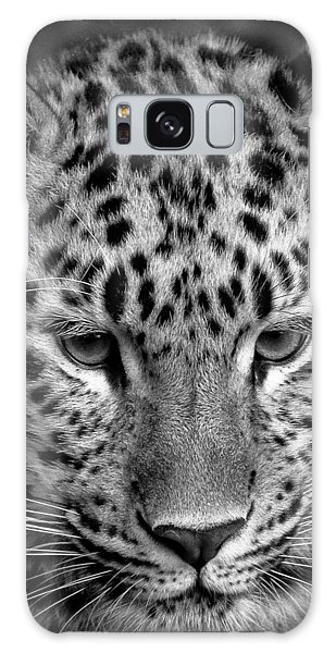 Amur Leopard In Black And White Galaxy Case