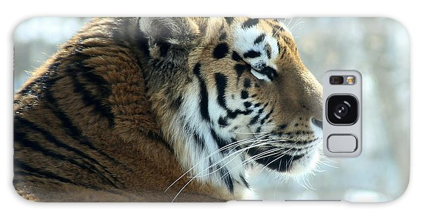 Amur Tiger Portrait Galaxy Case