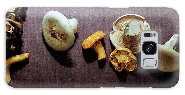 An Assortment Of Mushrooms Galaxy Case