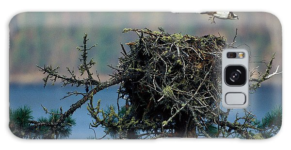 Boreal Forest Galaxy Case - An Eagle Flying From Its Nest by Peter Essick