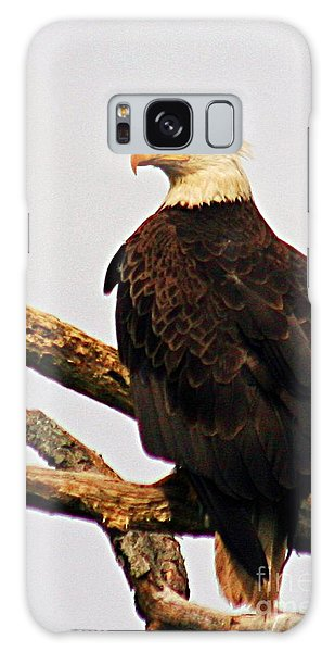 An Eagle's Perch Galaxy Case