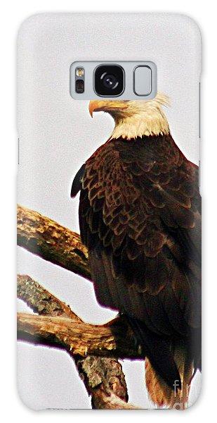 An Eagle's Perch Galaxy Case
