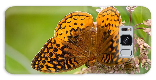 Great Spangled Fritillary Galaxy Case